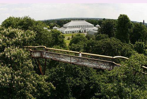 Xsterra Treetop Walkway - 1