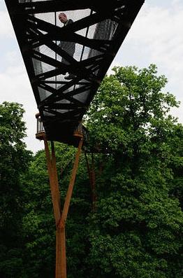 Xstrata Treetop Walkway - 2